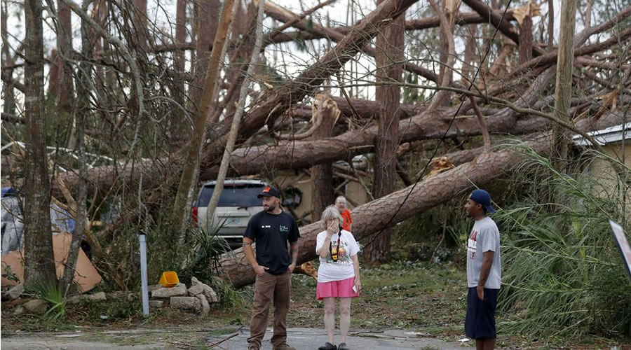 Hurricane Resistant Structures - Role of structural engineering and architectural firm